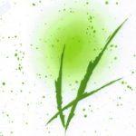P-026-B 綠竹林/色板樣式不變,顏色可依需求調整變更。